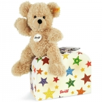 Fynn Teddy Bear with star suitcase