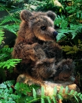 """Brown Bear """"Brummel"""""""