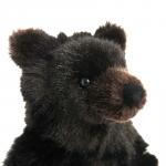 """Bear """"Bummi"""""""