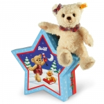 Clara Teddy Bear with star box