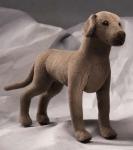 Deutsche Dogge, Minitier
