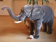 """Elefant """"Njogu"""", stehend"""