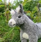 Donkey, small