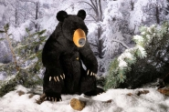 "Black Bear ""Baribal"", Gold-Collection"