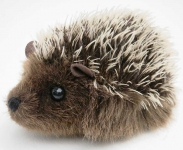 "Hedgehog ""Stachel"""