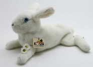 Rabbit, lying, white