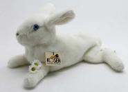 Kaninchen, liegend, weiß