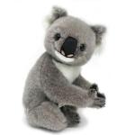 Koala, large