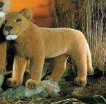 """Lioness """"Mara"""""""