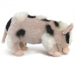 Micro-Pig, langes Fell