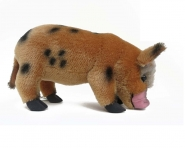 Micro-Pig, braun