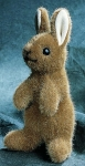 Mini Bunny, standing