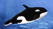 Orca, Kind