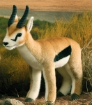 Thomson Gazelle, Bock