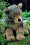 "Wolf Puppy ""Jurek"", sitting"