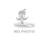Zahnradsatz 78 rpm/50Hz
