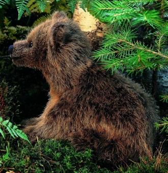 "Brown Bear ""Lümmel"", sitting"