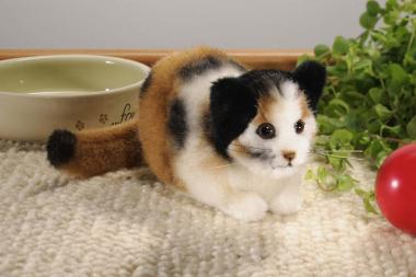 Tortoiseshell Cat, mini