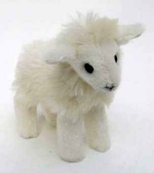Mini-Lamb