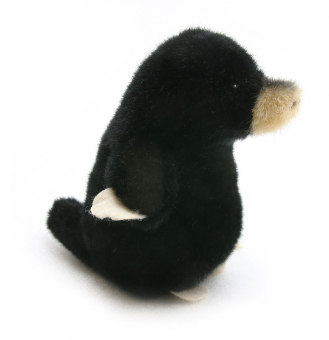 Mole baby