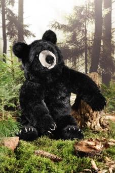 Black Bear, large