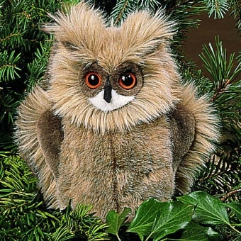 Eagle Owl, small