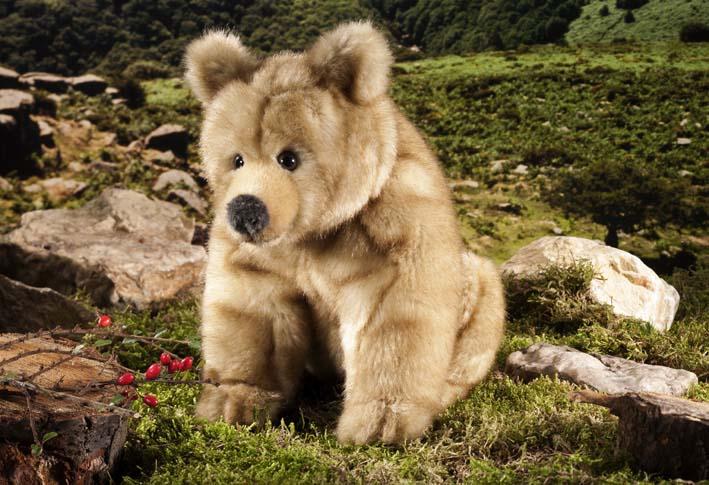 "Brown Bear ""Emma"""