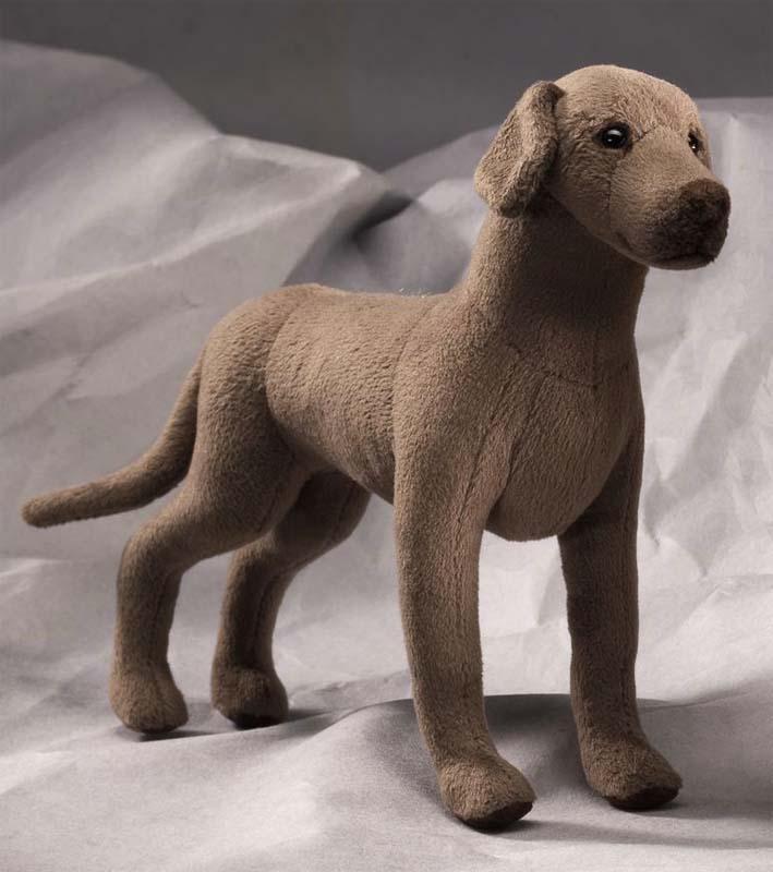 Great Dane, Miniature