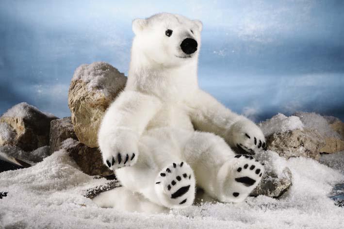 Polar Bear, small