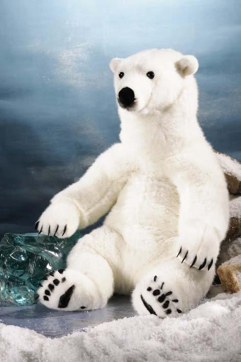 Eisbär, groß