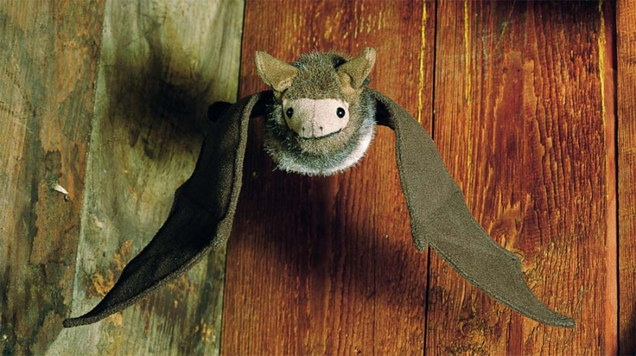 Bat, dark brown