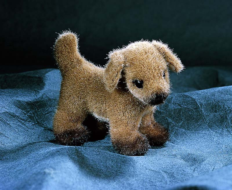 Hund, Minitier