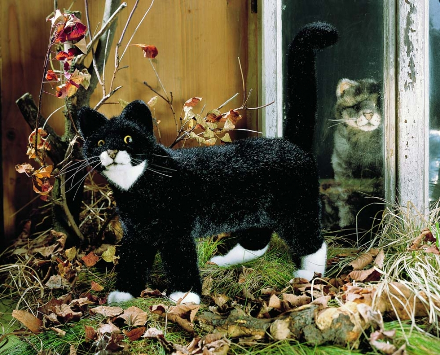 "Cat ""Mauz"", standing"