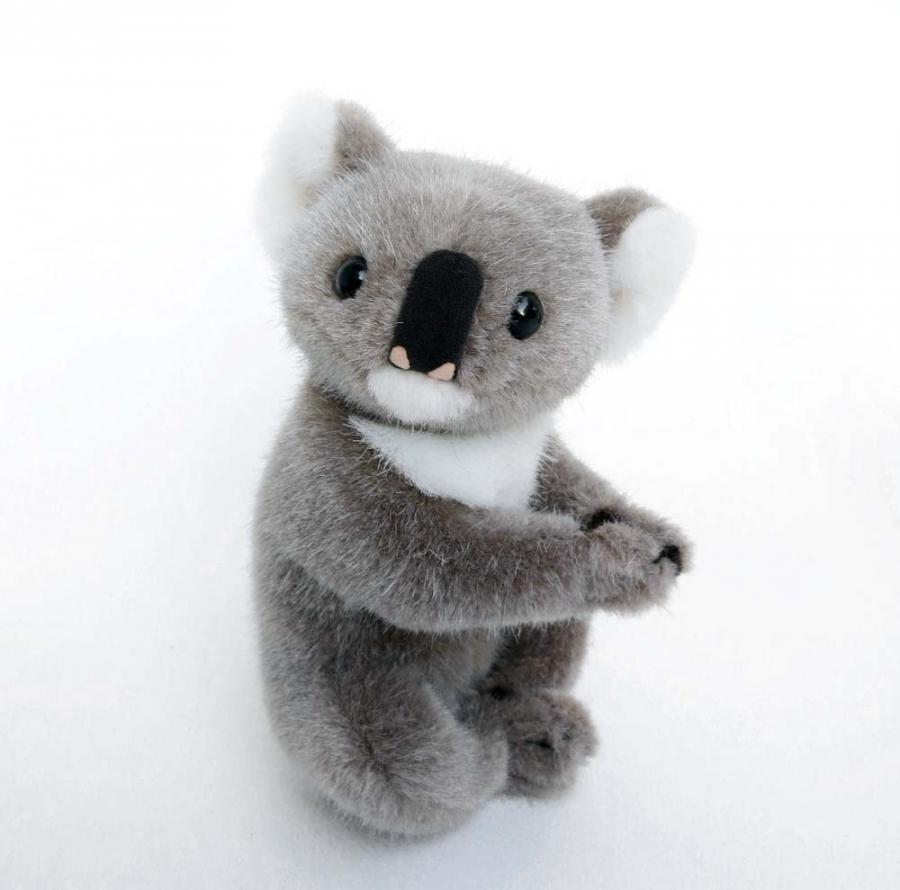 Koala, small