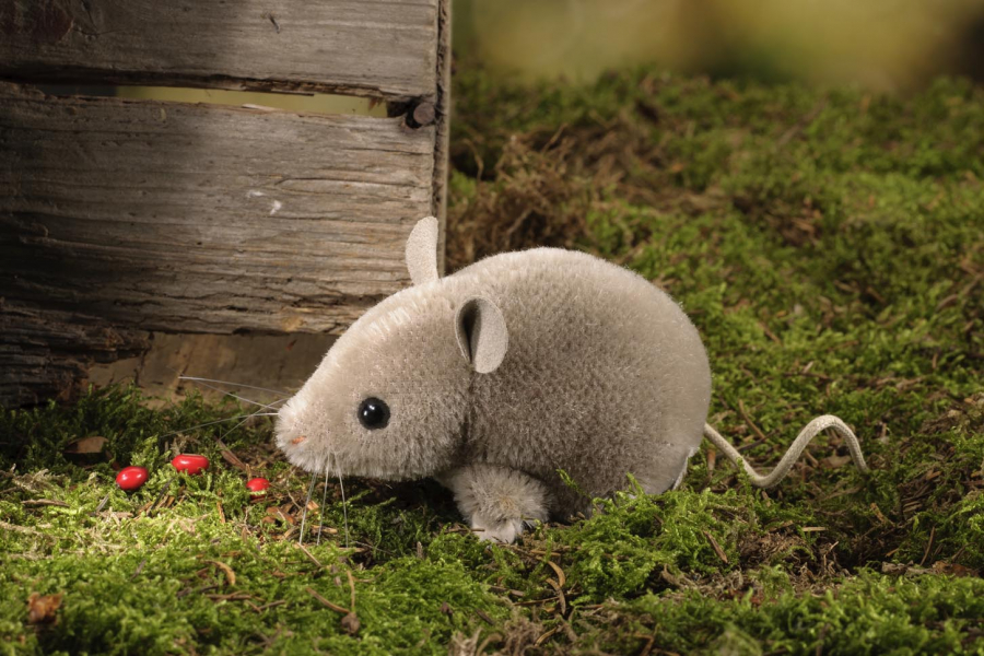 Mouse, greybrown