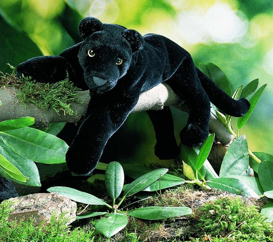 """Black Panther """"Nalini"""", lying"""