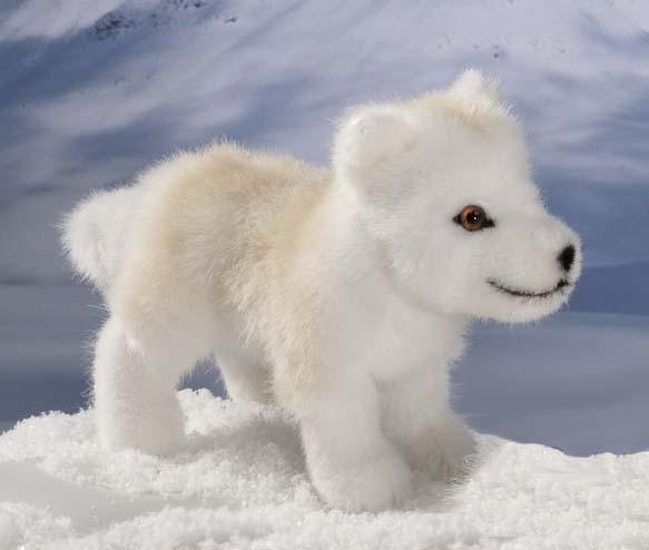 Polarwolf-Welpe, stehend