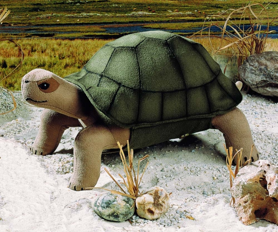 """Turtle """"Olga"""""""