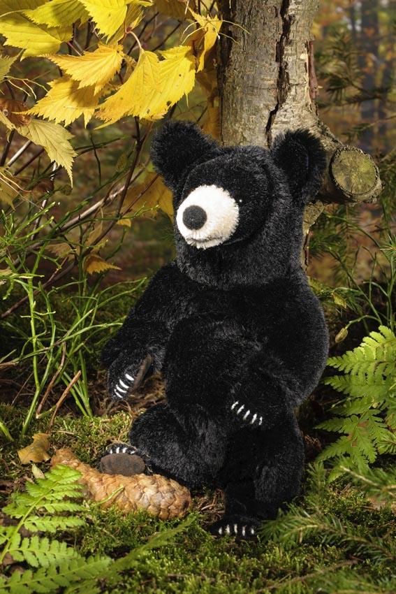 Schwarzbär, klein