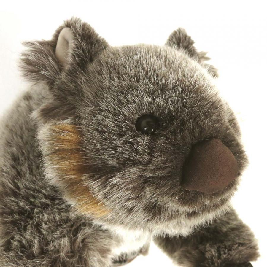 "Wombat ""Donna"""