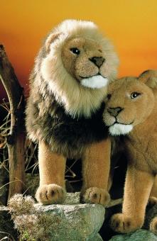 "Lion ""Talek"", standing"