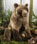 "Brown Bear ""Max"""