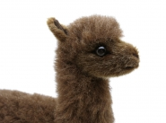 Alpaca, brown