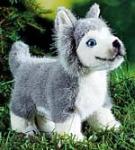 Huskywelpe