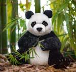 """Panda """"Maya"""", sitzend"""