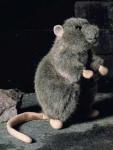 "Rat ""Rudi"""