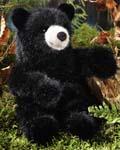 Black Bear, young