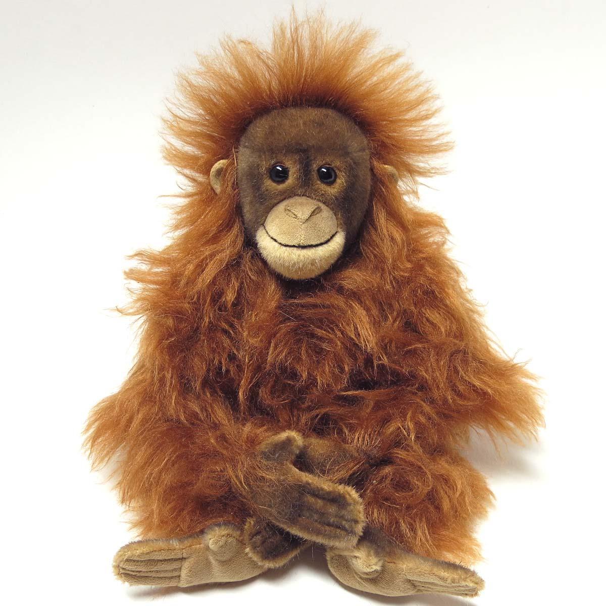 Orangutans: Species, Characteristics, Behavior