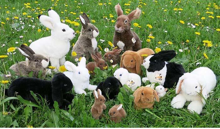 Kösen Hasen Kaninchen Kösener Plüschtiere Stofftier